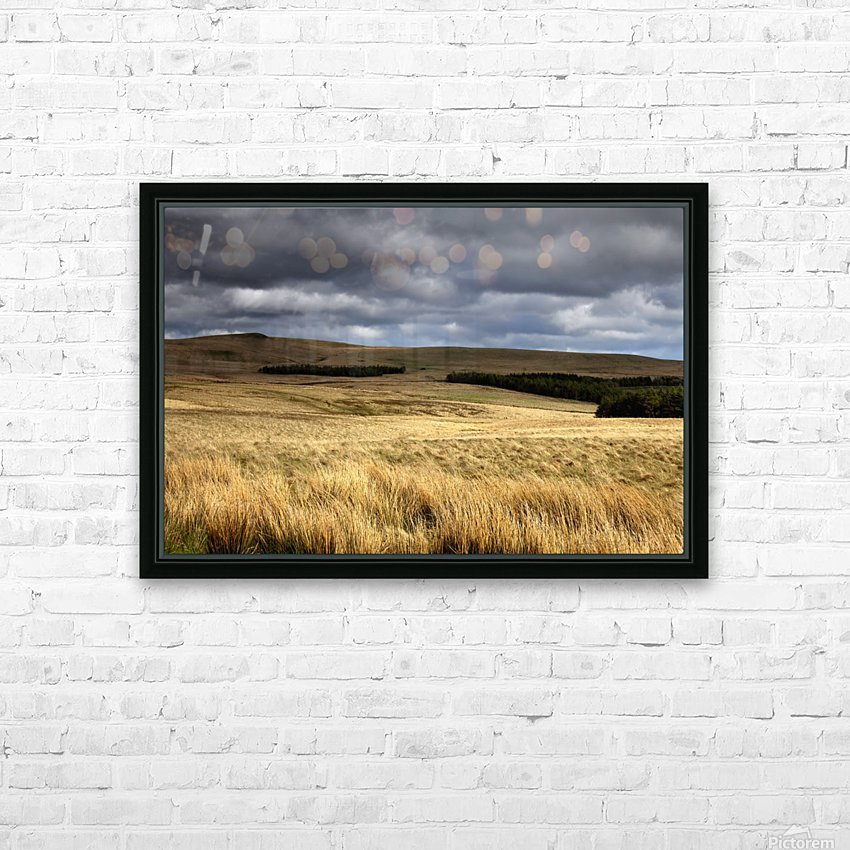 Field Of Wheat With Dark Clouds Overhead, Northumberland, England HD Sublimation Metal print with Decorating Float Frame (BOX)