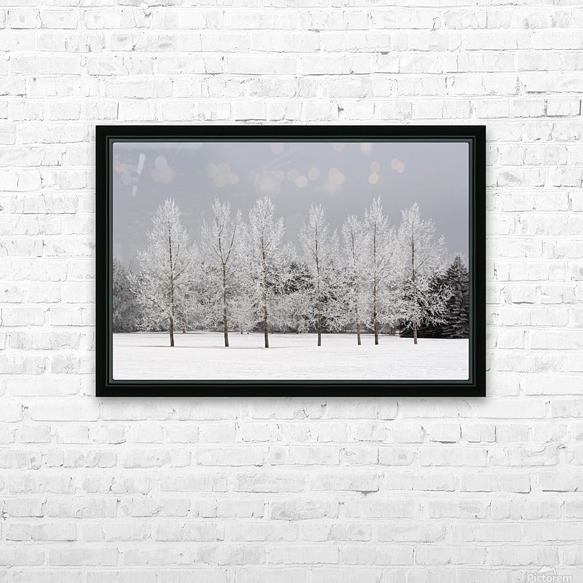 Winter, Calgary, Alberta, Canada HD Sublimation Metal print with Decorating Float Frame (BOX)