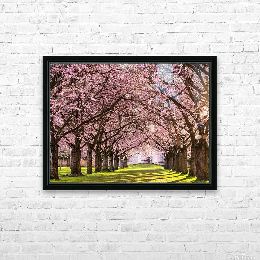 Cherry Blossom in a Park HD Sublimation Metal print with Decorating Float Frame (BOX)