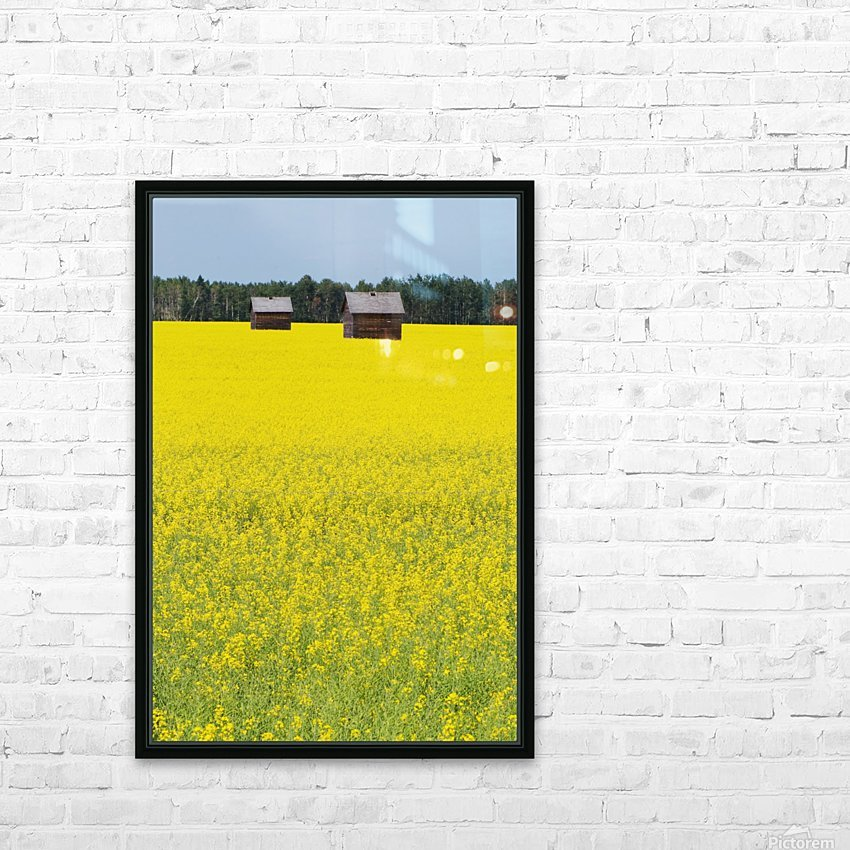 Alberta, Canada; Two Wooden Shacks In A Canola Field HD Sublimation Metal print with Decorating Float Frame (BOX)