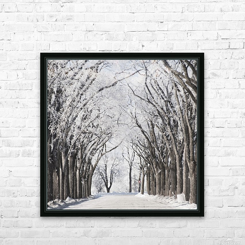 Winnipeg, Manitoba, Canada; A Road And Trees Covered In Snow In Winter HD Sublimation Metal print with Decorating Float Frame (BOX)