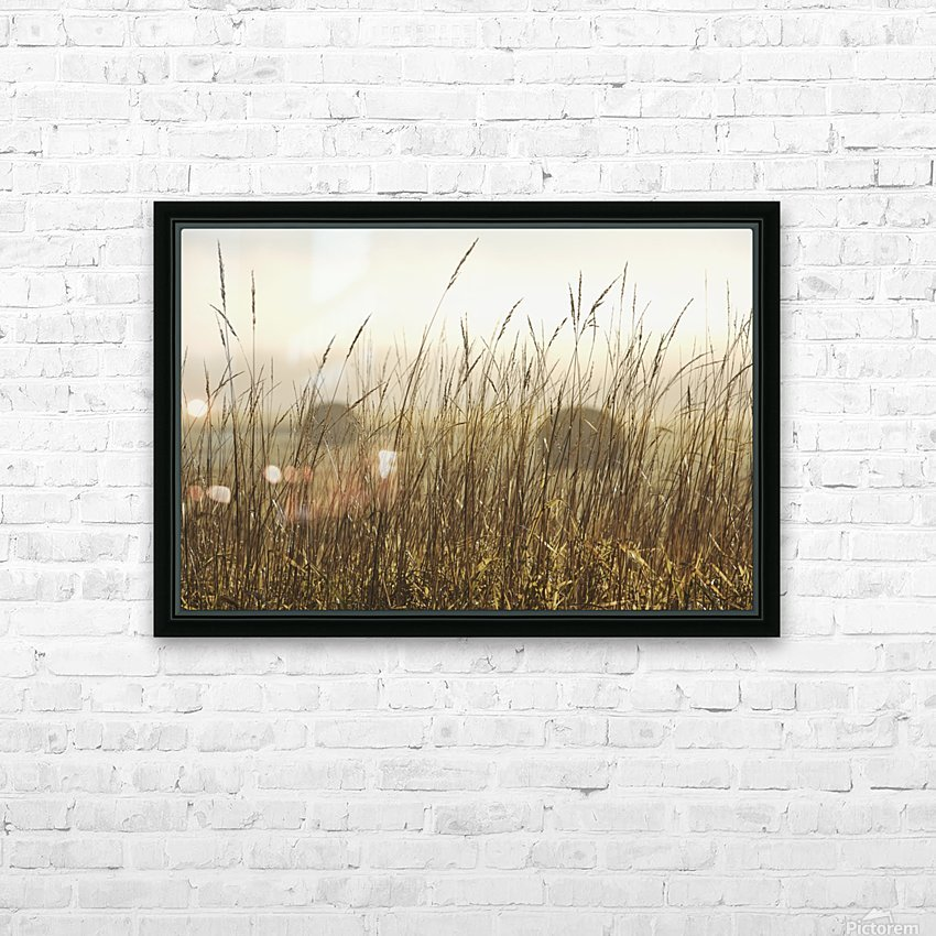 Bales Of Hay In A Field In The Fog; Thunder Bay, Ontario, Canada HD Sublimation Metal print with Decorating Float Frame (BOX)