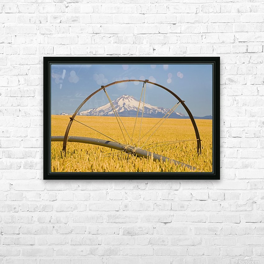 Irrigation Pipe In Wheat Field With Mount Hood In Background; Oregon, Usa HD Sublimation Metal print with Decorating Float Frame (BOX)