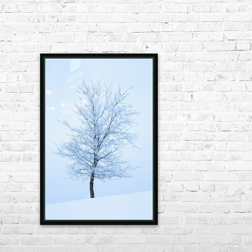 Frost And Snow Cover An Oak Tree; Calgary, Alberta, Canada HD Sublimation Metal print with Decorating Float Frame (BOX)