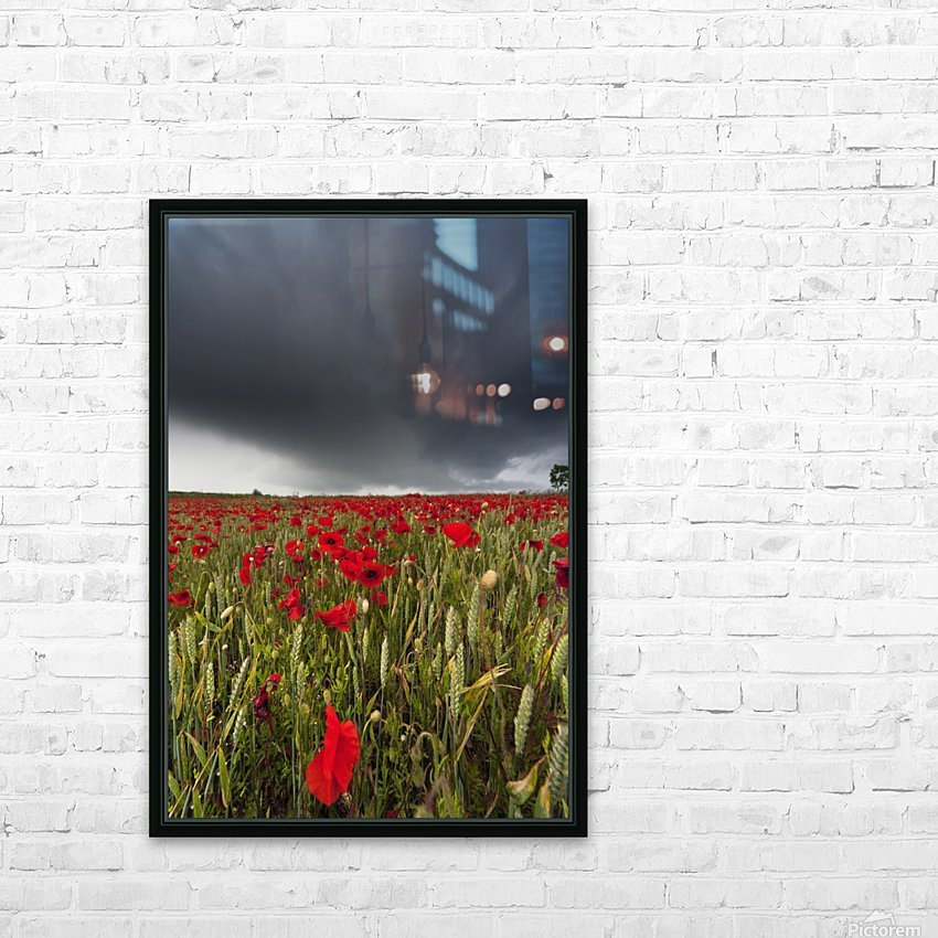 A Field Of Red Poppies Under A Dark Stormy Sky; Northumberland, England HD Sublimation Metal print with Decorating Float Frame (BOX)