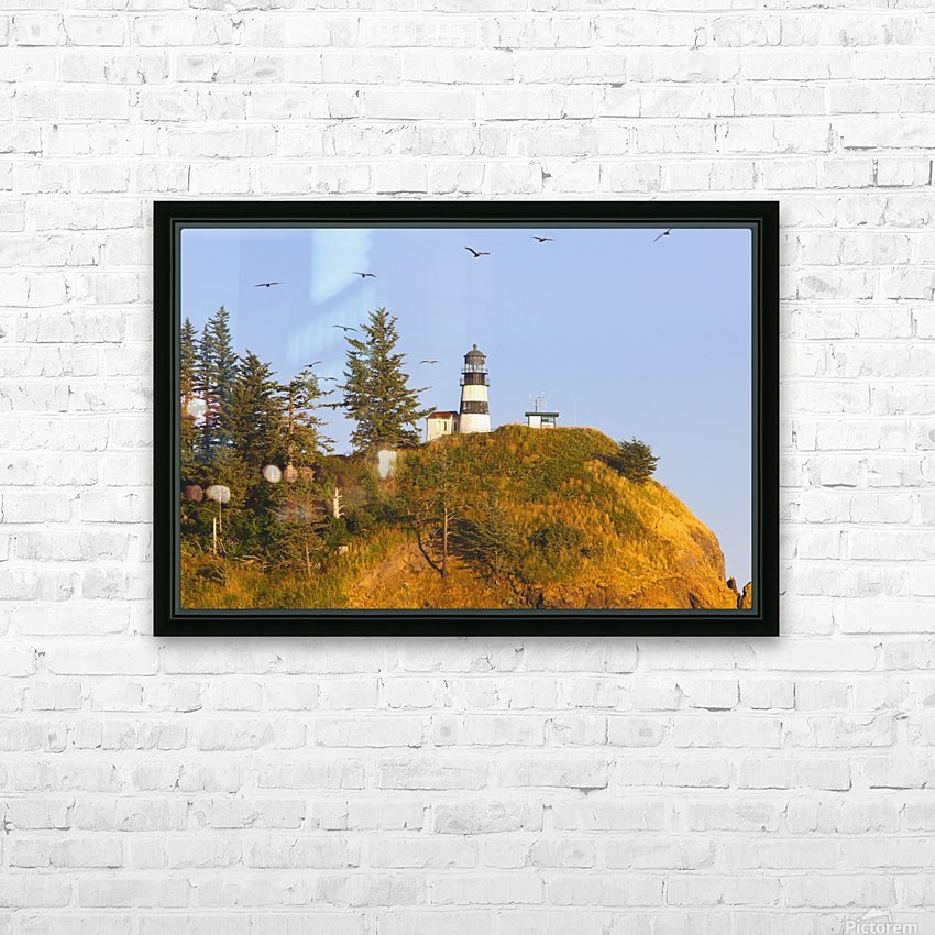 Birds In Flight Over Cape Disappointment Lighthouse; Ilwaco, Washington, United States of America HD Sublimation Metal print with Decorating Float Frame (BOX)