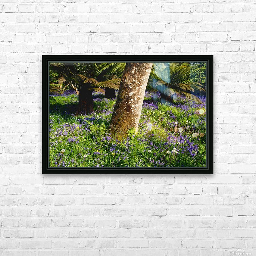Mount Congreve Gardens; County Waterford, Ireland HD Sublimation Metal print with Decorating Float Frame (BOX)