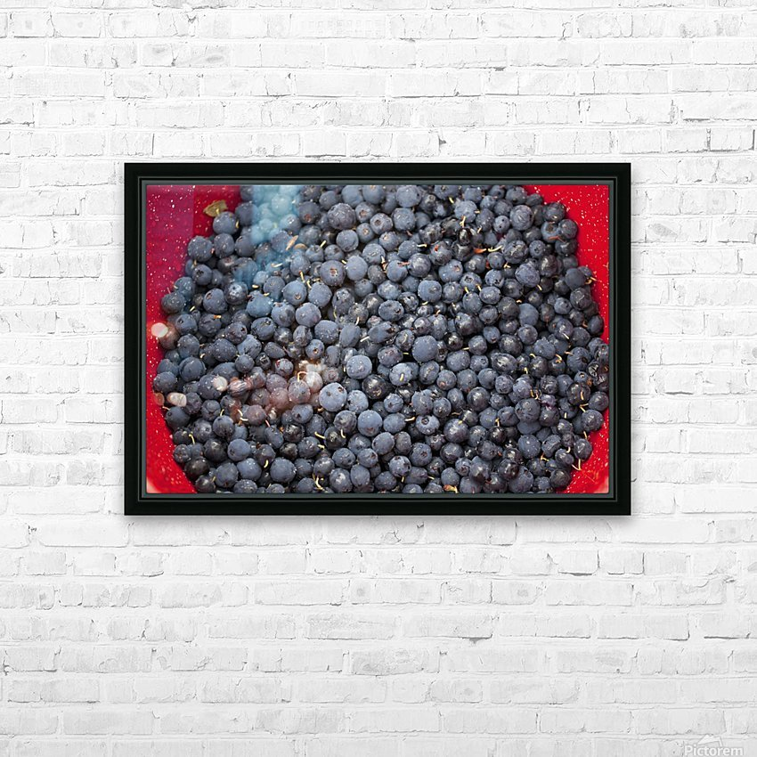 A bowl of blueberries;Alaska united states of america HD Sublimation Metal print with Decorating Float Frame (BOX)