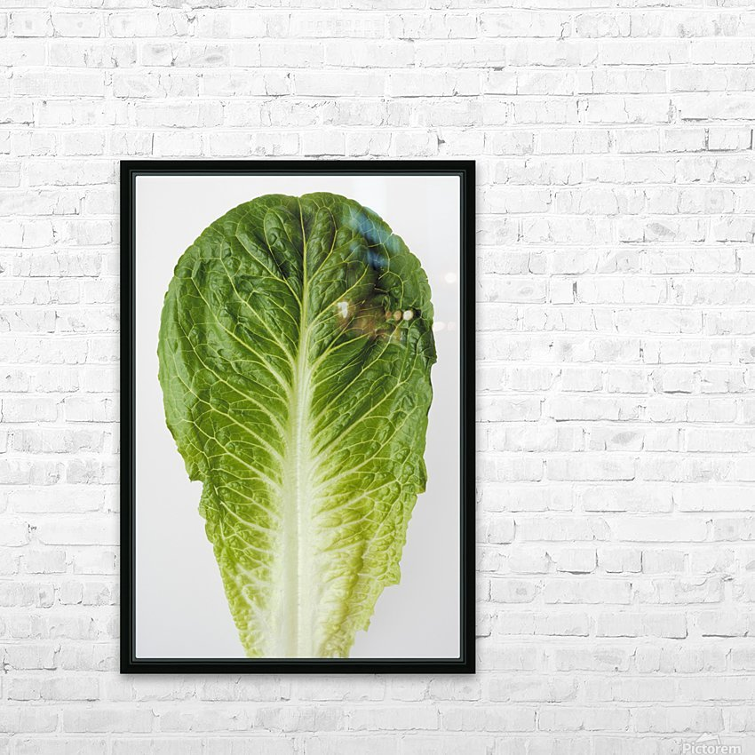 Agriculture - Closeup of a Romaine lettuce leaf on a white surface, studio. HD Sublimation Metal print with Decorating Float Frame (BOX)