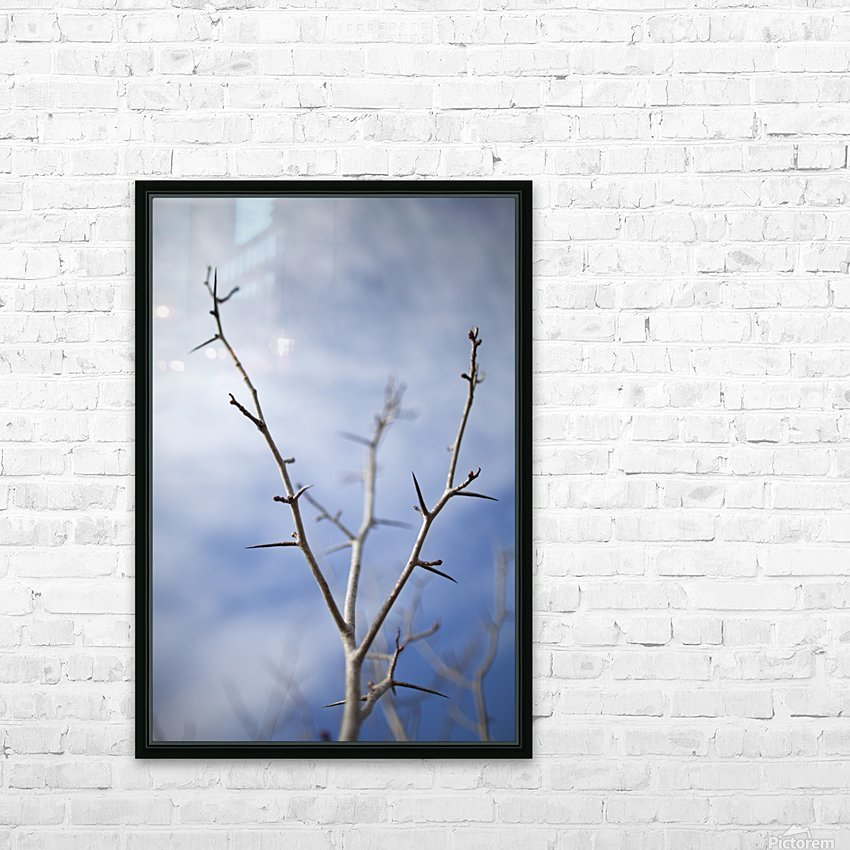 Tree with buds in springtime; Milton, Ontario, Canada HD Sublimation Metal print with Decorating Float Frame (BOX)