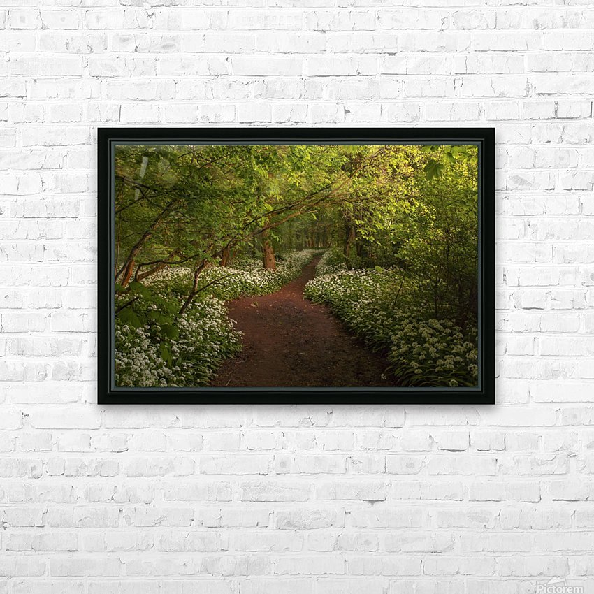 The Path to Fairytales, Ramsons Wood, Lancashire, UK HD Sublimation Metal print with Decorating Float Frame (BOX)