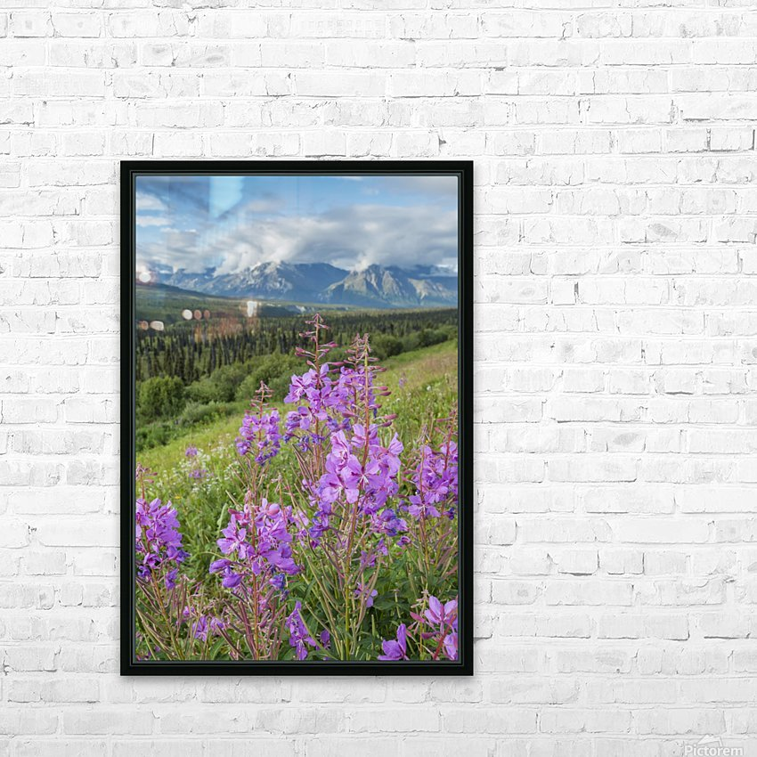 Scenic view of landscape near Palmer, Alaska, with Fireweed (Epilobium angustifolium) in the foreground, Southcentral Alaska, summer HD Sublimation Metal print with Decorating Float Frame (BOX)