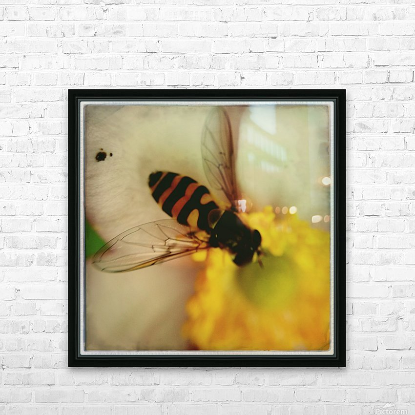 Bee-ing HD Sublimation Metal print with Decorating Float Frame (BOX)