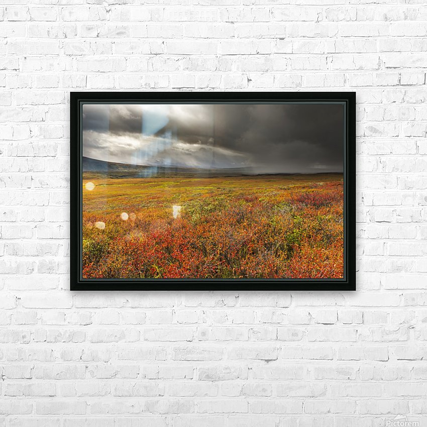 A storm passes over the bright colors of autumn in Denali National Park & Preserve, Alaska. HD Sublimation Metal print with Decorating Float Frame (BOX)