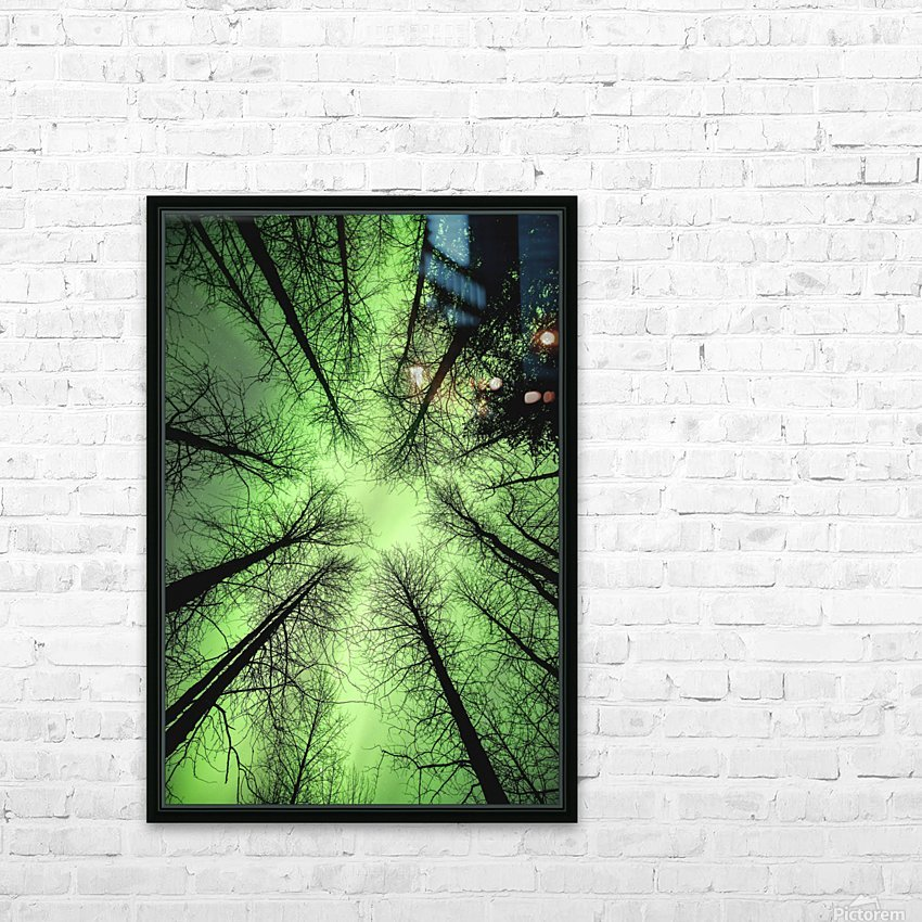 The aurora borealis glows overhead in a spruce forest in Portage Valley, Chugach National Forest, Southcentral Alaska. HD Sublimation Metal print with Decorating Float Frame (BOX)