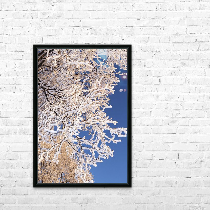 Hoar frosted tree branches against a blue sky; Anchorage, Alaska, United States of America HD Sublimation Metal print with Decorating Float Frame (BOX)