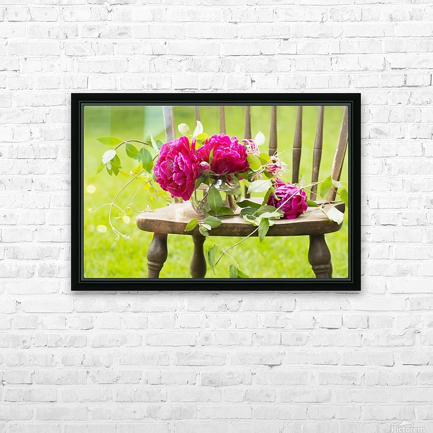 Fresh pink peonies picked and lying on a wooden chair; New Westminster, British Columbia, Canada HD Sublimation Metal print with Decorating Float Frame (BOX)