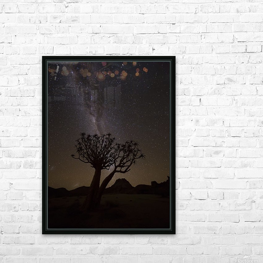 The milky way slashes across the night sky above a quiver tree (kokerboom, aloe dichotoma) in Richtersveld National Park; South Africa HD Sublimation Metal print with Decorating Float Frame (BOX)