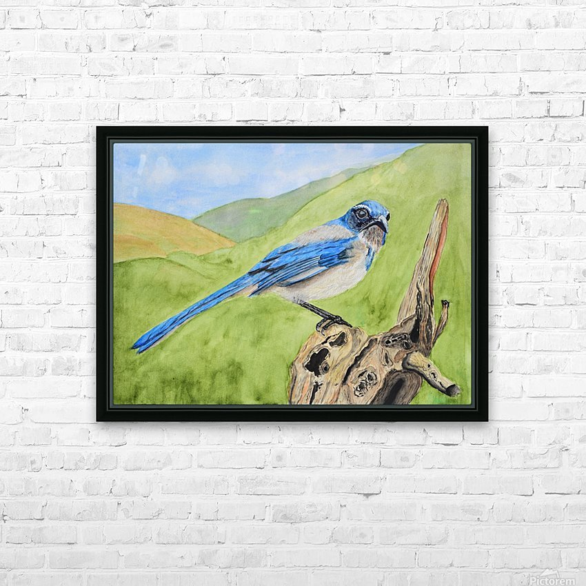 Blue Scrub Jay On Dead Tree HD Sublimation Metal print with Decorating Float Frame (BOX)