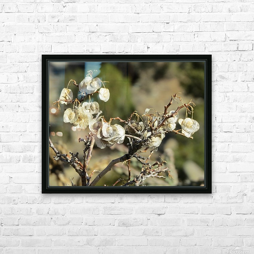 Weeds VP2 HD Sublimation Metal print with Decorating Float Frame (BOX)