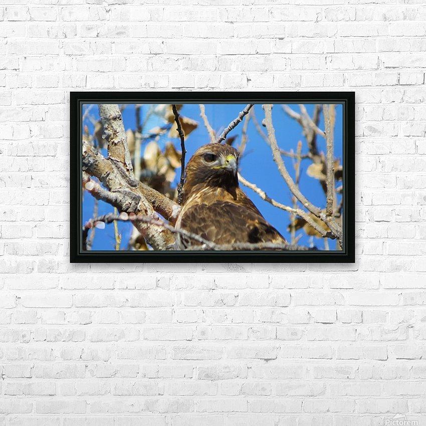 Golden Eagle VP3 HD Sublimation Metal print with Decorating Float Frame (BOX)
