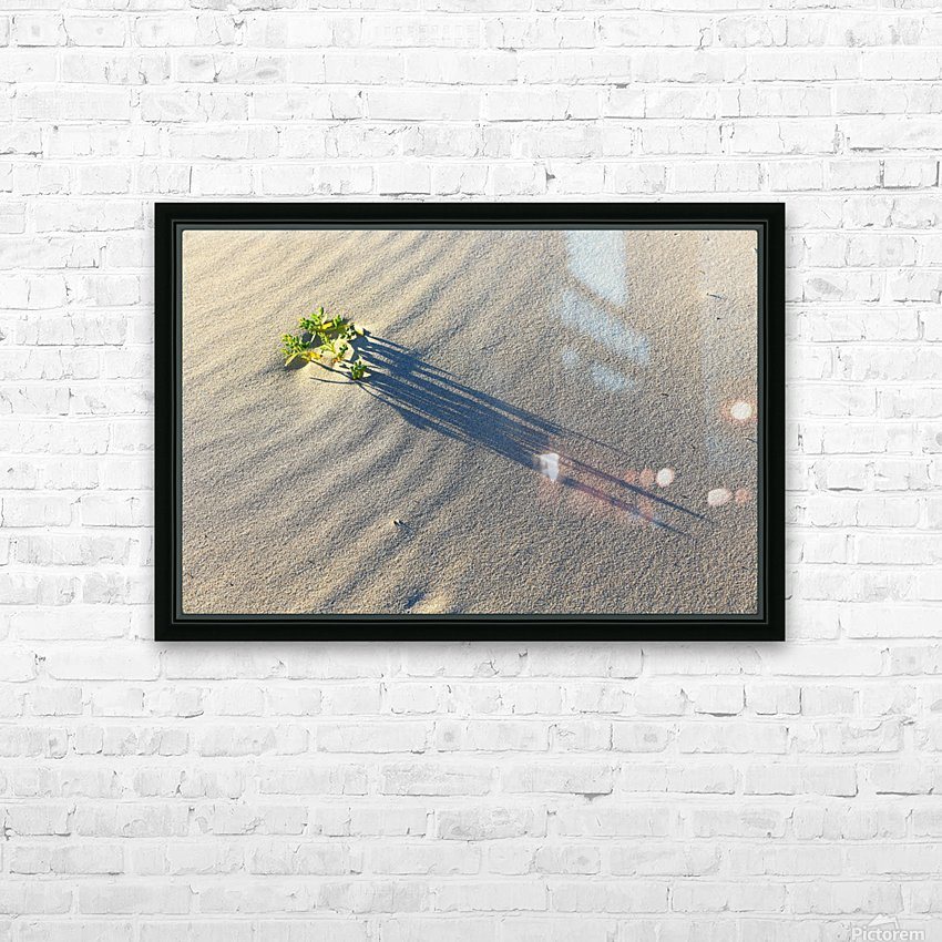Evening Shadows on Dune HD Sublimation Metal print with Decorating Float Frame (BOX)