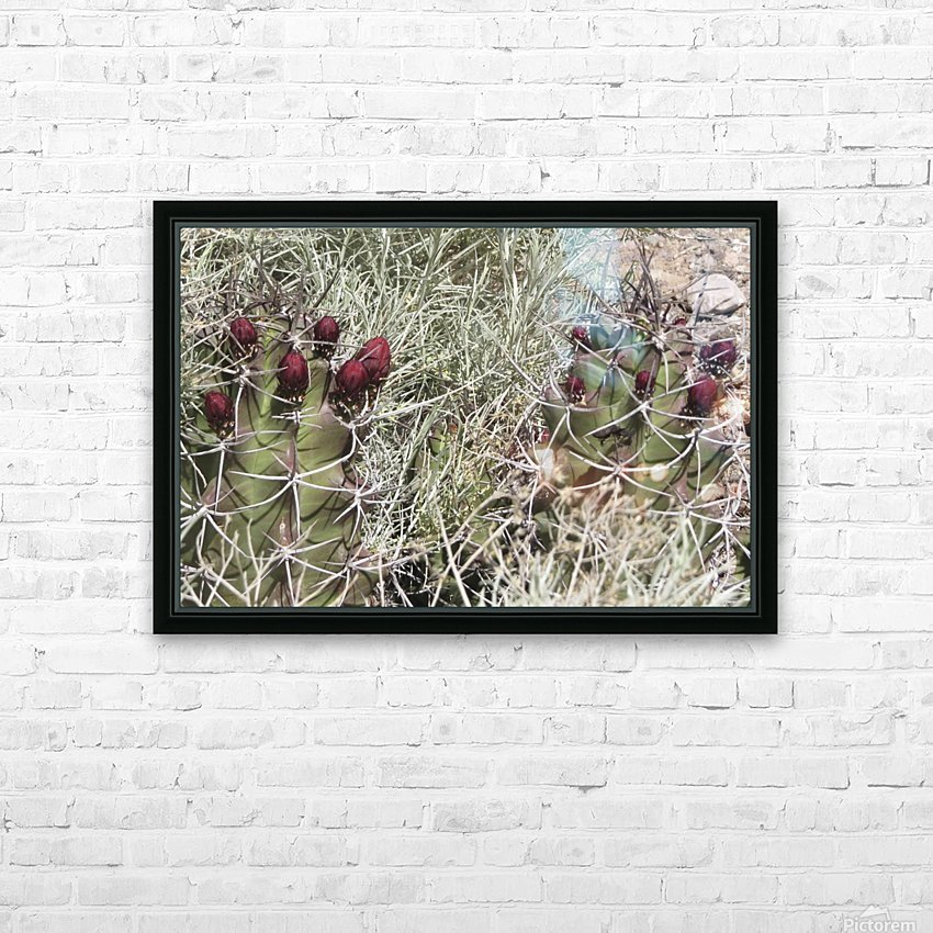 Cactus Flower VP2 HD Sublimation Metal print with Decorating Float Frame (BOX)