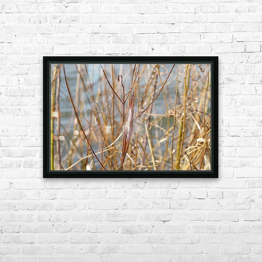 Feather in Reeds at the Glenn VP3 HD Sublimation Metal print with Decorating Float Frame (BOX)