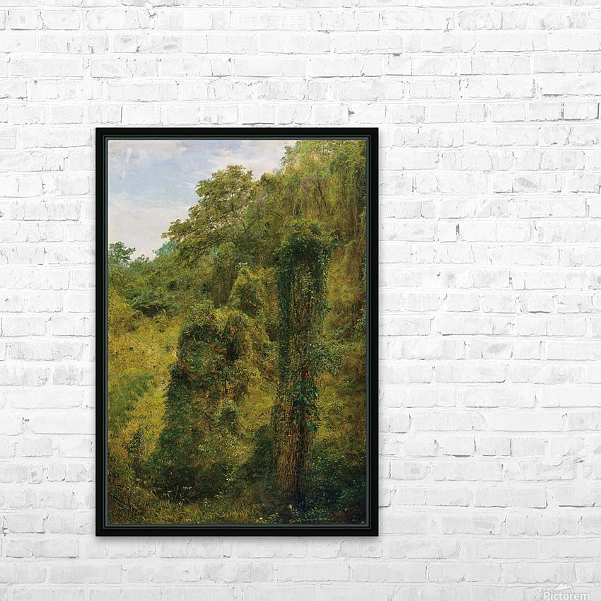 View of a forest in Jamaica HD Sublimation Metal print with Decorating Float Frame (BOX)