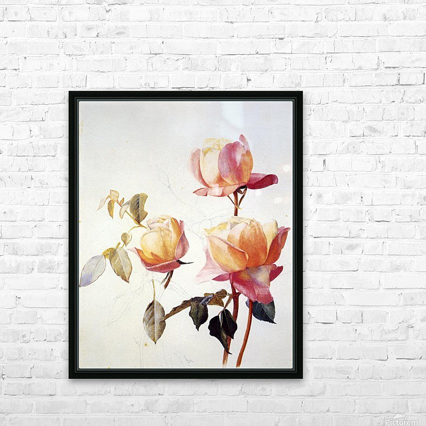 Florentine Roses HD Sublimation Metal print with Decorating Float Frame (BOX)