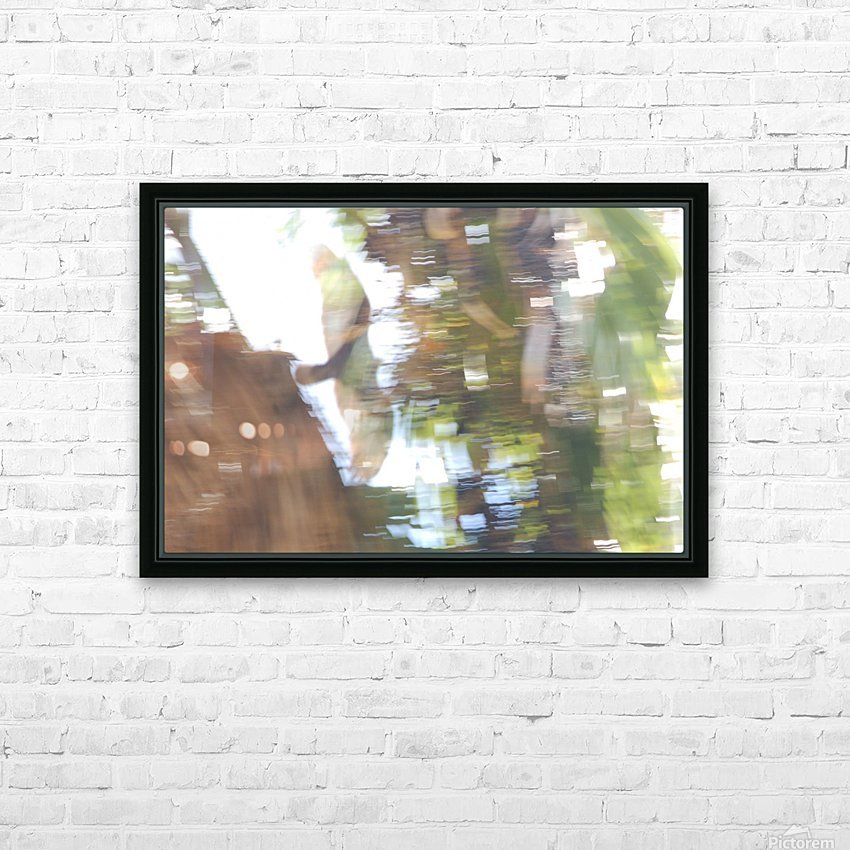 Bird of Prey In-Flight 1 Abstract HD Sublimation Metal print with Decorating Float Frame (BOX)