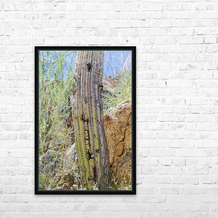 Saguaro HD Sublimation Metal print with Decorating Float Frame (BOX)