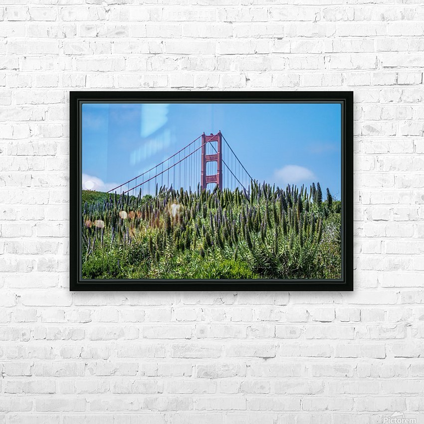 San Francisco Lupines HD Sublimation Metal print with Decorating Float Frame (BOX)