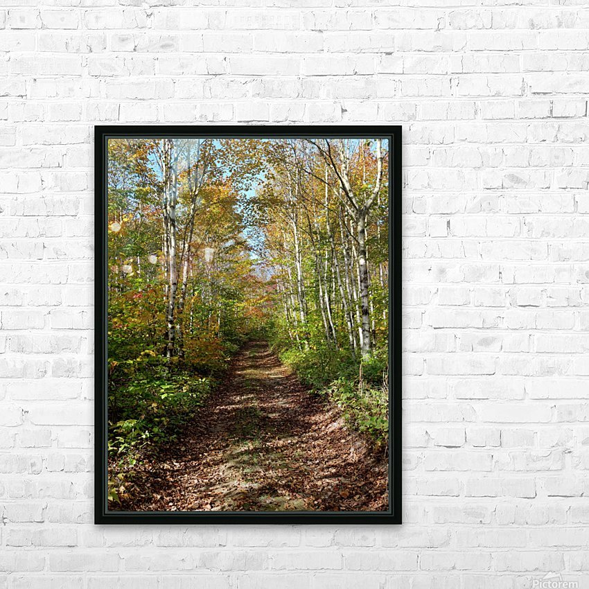 Fall foliage, Mount Pisgah, NB, Oct. 6, 2013 HD Sublimation Metal print with Decorating Float Frame (BOX)