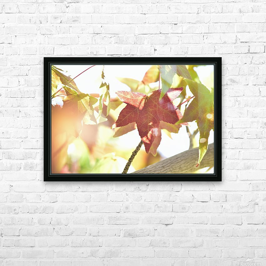 Leaves Macro 1  HD Sublimation Metal print with Decorating Float Frame (BOX)