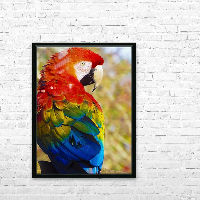 All the Colors of the Rainbow HD Sublimation Metal print with Decorating Float Frame (BOX)
