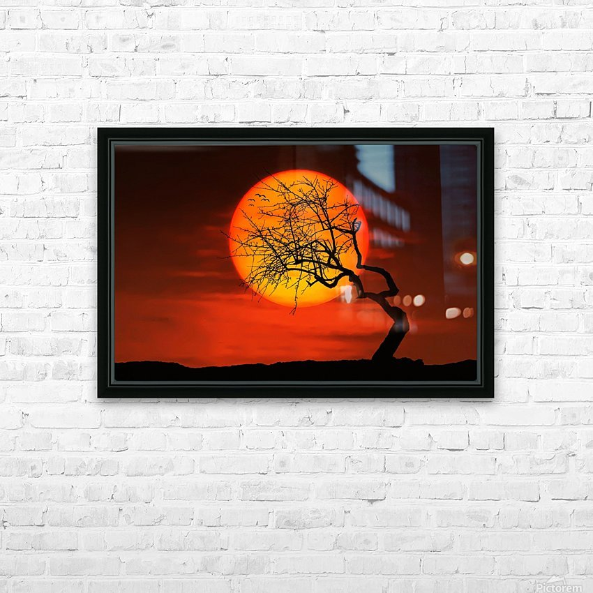 Bird on Sun HD Sublimation Metal print with Decorating Float Frame (BOX)