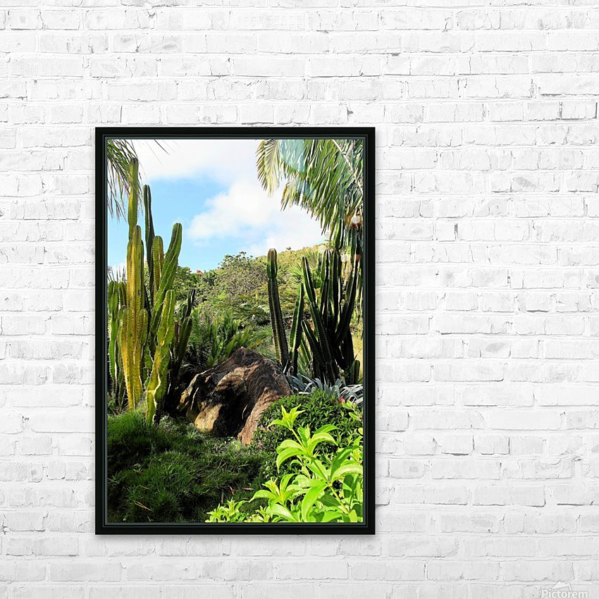 Nevis cactus HD Sublimation Metal print with Decorating Float Frame (BOX)
