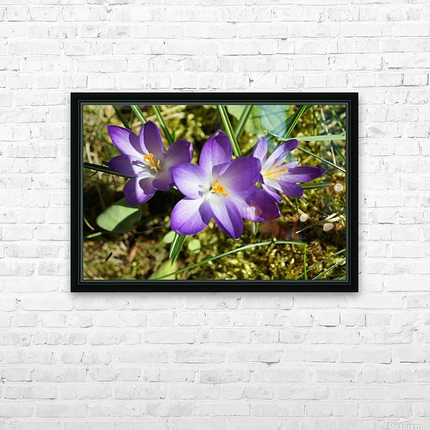 DSC06574 HD Sublimation Metal print with Decorating Float Frame (BOX)