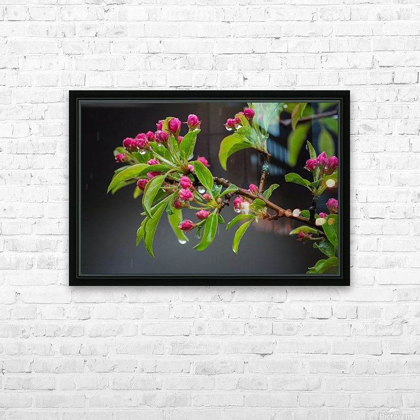Spring has Sprung HD Sublimation Metal print with Decorating Float Frame (BOX)