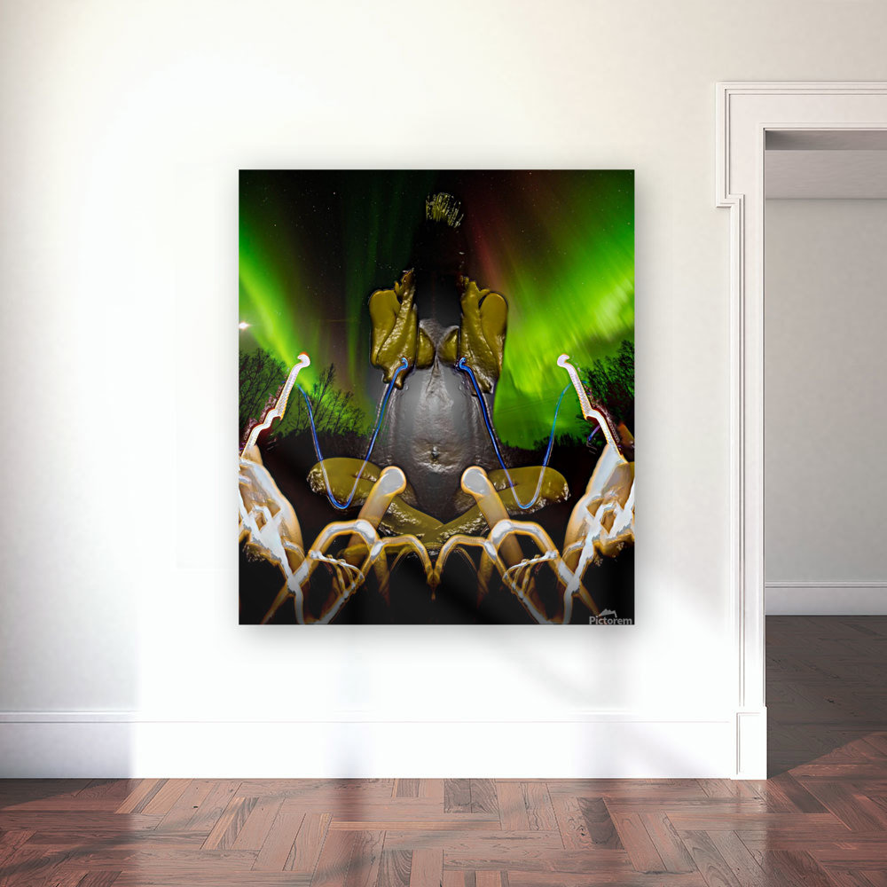 AURORA LANDING  Art