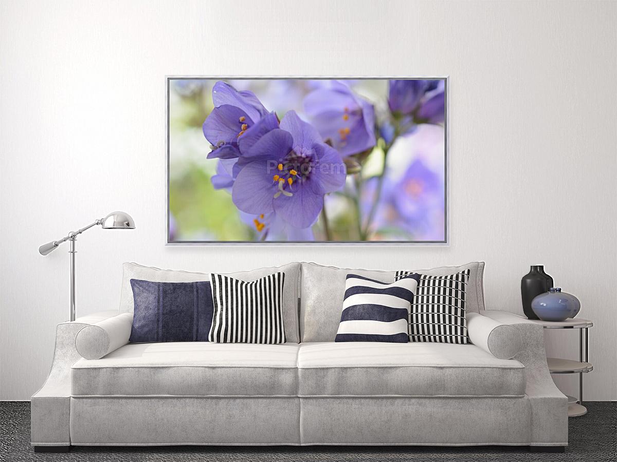 Blue Floral Photograph  Art