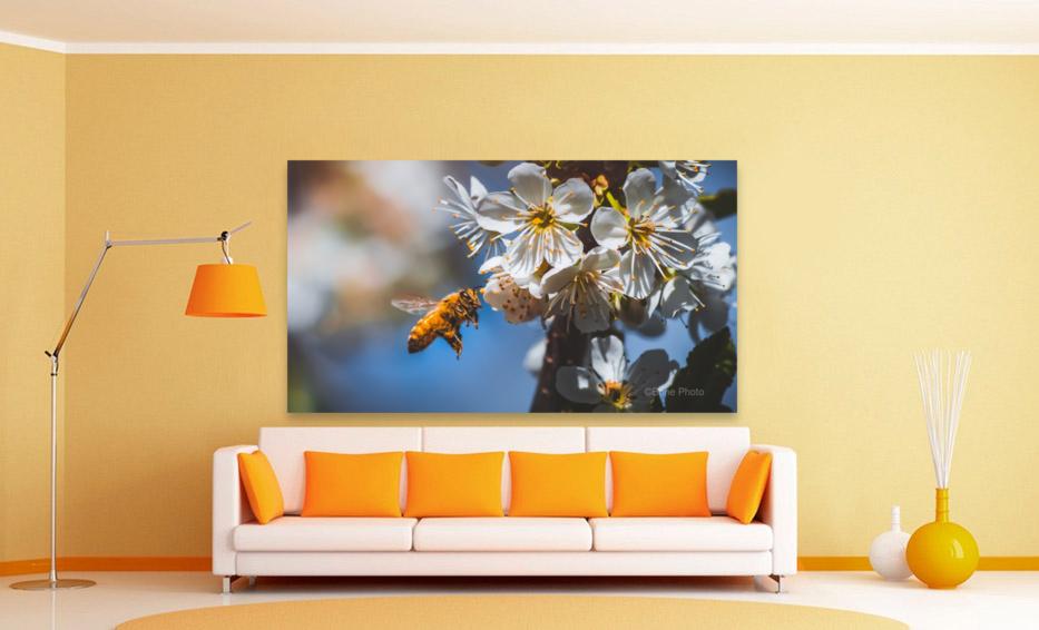 Blossom & The Bee  Art