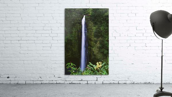 Hawaii, Big Island, Akaka Falls, Tropical Flowers Blooming In Foreground.