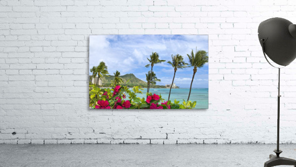 Hawaii, Oahu, Diamond Head, Waikiki, Palm Trees And Bougainvillea Foreground.