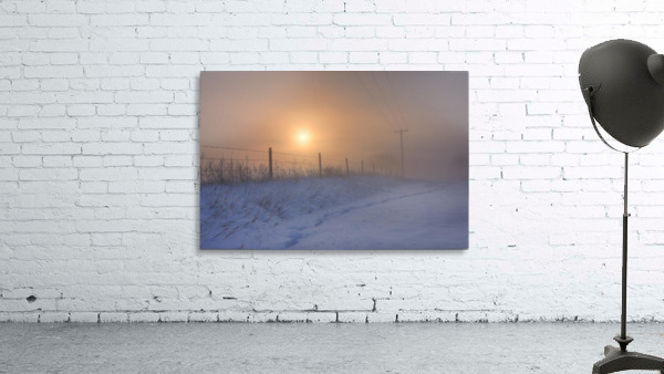 Foggy Winter Sunrise Over Barbed Wire Fence And Hydro Lines, Alberta Prairie
