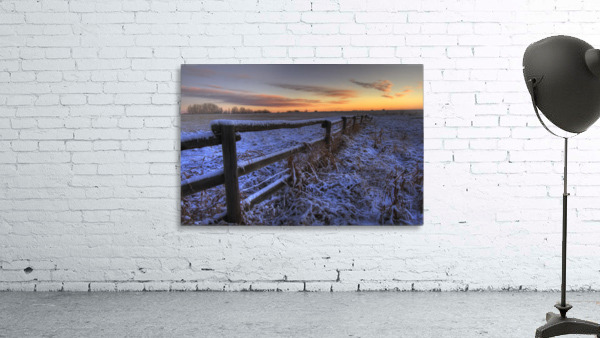 Early Morning Snow On A Cattle Fence, Rural Alberta