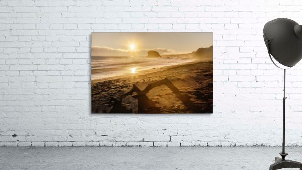 Seashore at sunset, San Simeon State Park; California, United States of America