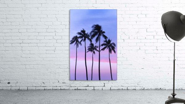 Five coconut palm trees in line with cotton candy sunset behind; Honolulu, Oahu, Hawaii, United States of America