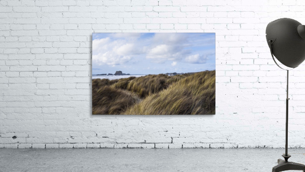 Grass and clouds frame a scene along the coast; Bandon, Oregon, United States of America
